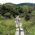 湿原散策観光客