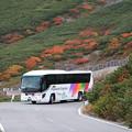 写真: 乗鞍エコーラインのシャトルバス