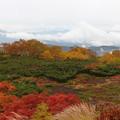 写真: 錦絵のような紅葉世界