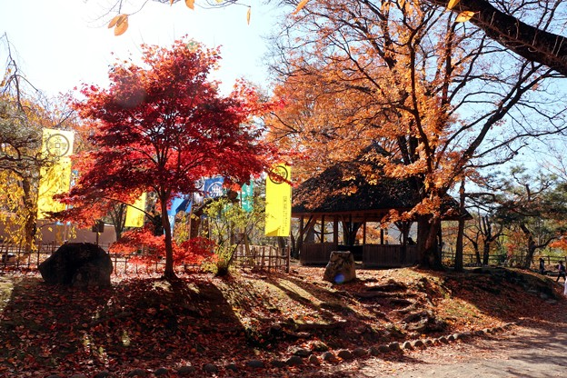 Photos: 紅葉と東屋