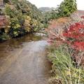 写真: 宇連川(板敷川)