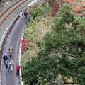 写真: 鳳来峡観光散策