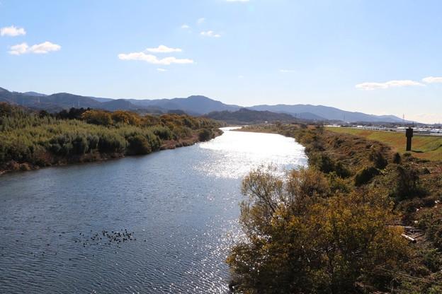 写真: 加茂橋より豊川