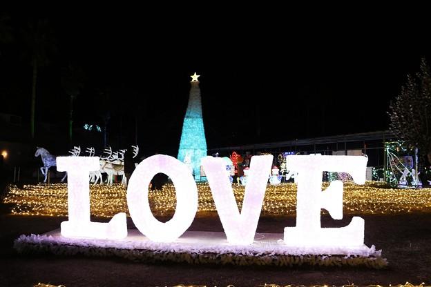 写真: 「LOVE」イルミネーション
