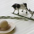 牛と帽子 2/3 DPP09_60026