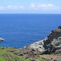 写真: カエル岩