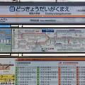 Photos: 獨協大学前駅 Dokkyodaigakumae Sta.