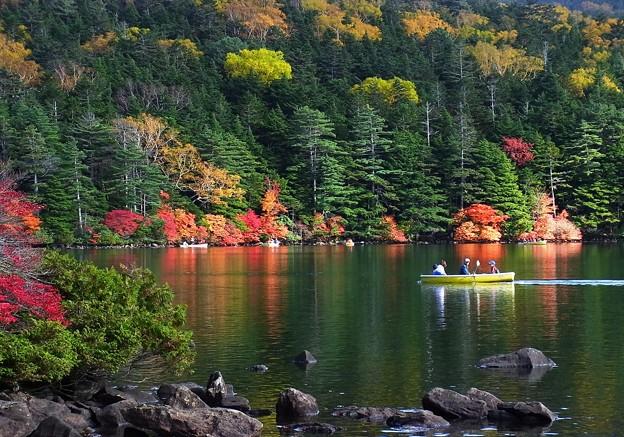 白駒池で秋を楽しむ。