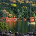 写真: 白駒池で秋を楽しむ。