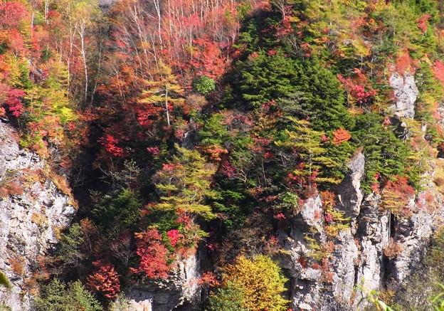 向こうの崖の色模様。