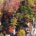 写真: 向こうの崖の色模様。