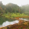 写真: 霧の弓池園地。