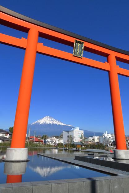 富士山本宮大鳥居。