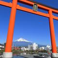 Photos: 富士山本宮大鳥居。