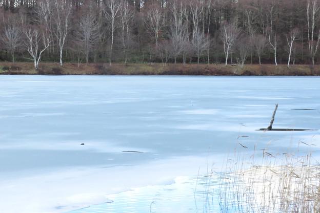 凍える湖。