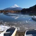 写真: 氷り始める精進湖。