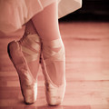 Photos: 第122回モノコン Pointe Shoes♪