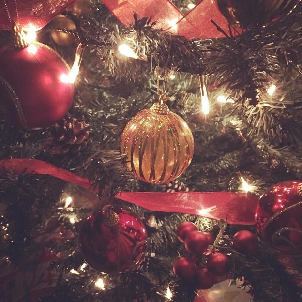 Photos: Merry Christmas!