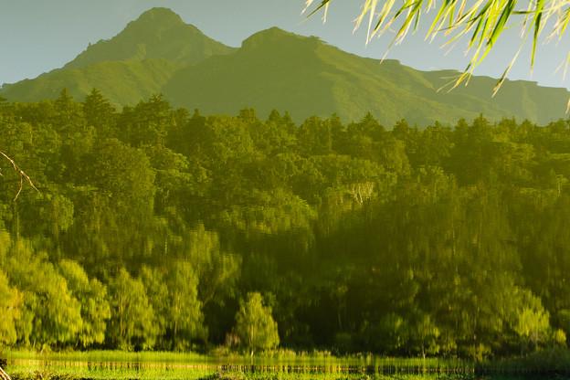 姫沼の水鏡@2012北海道旅行2日目
