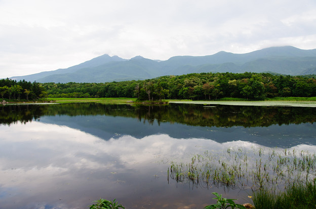 知床五湖散策@2013北海道旅行2日目