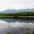 写真: 知床五湖散策@2013北海道旅行2日目