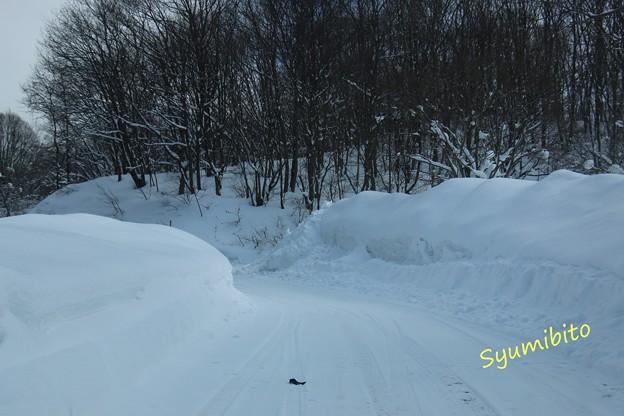 写真: 2月中旬 蔵王の峠道にて