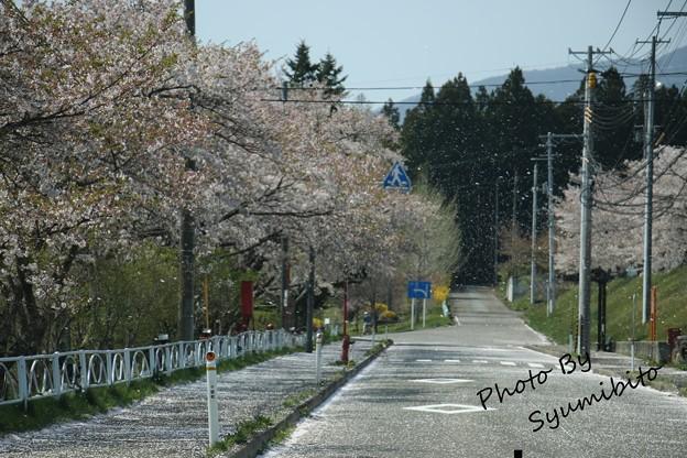 写真: 4月30日 七ヶ宿町にて