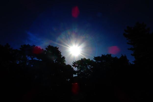 写真: 日輪