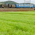 Photos: JR東海道本線(琵琶湖線) 能登川~安土