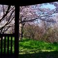 写真: 窓からの眺め