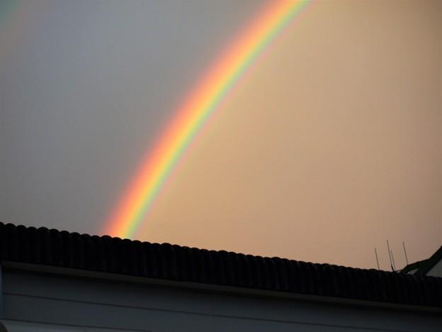 虹を見たかい?