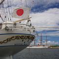 写真: 終戦の日 日本丸と海王丸