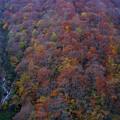 晩秋の有峰林道 日陰になると一気に寒くなる