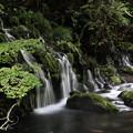 写真: 元滝伏流水
