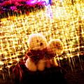 写真: 光の中のわんちゃん
