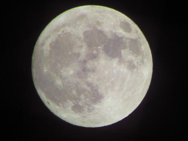 元旦初Moon