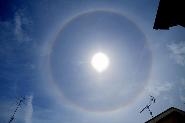 虹の輪っか!「日暈」