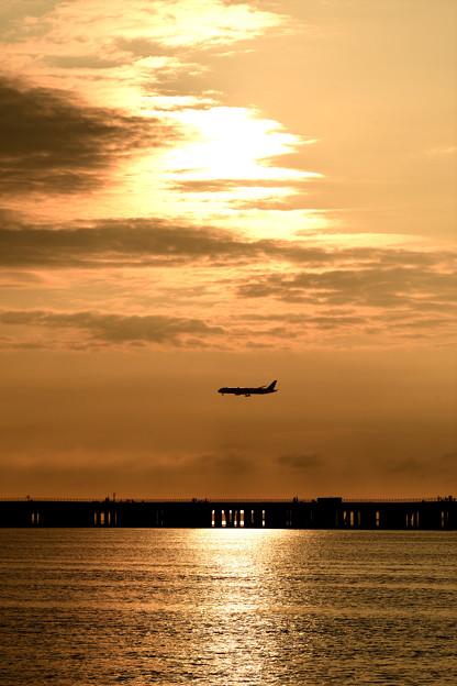 柔らかな日差しを浴びる飛行機