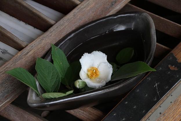 「沙羅の寺」應聖寺(4)