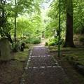 Photos: 「沙羅の寺」應聖寺(10)
