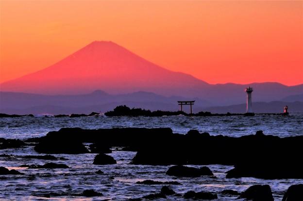 写真: 日没の富士
