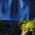 写真: 善五郎の滝