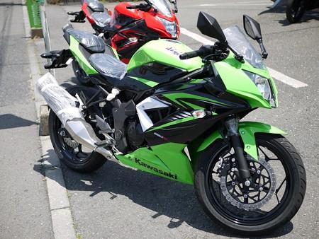 250SL 緑