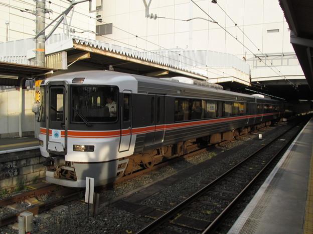 豊橋駅1番線に到着した臨時急行飯田線秘境駅号