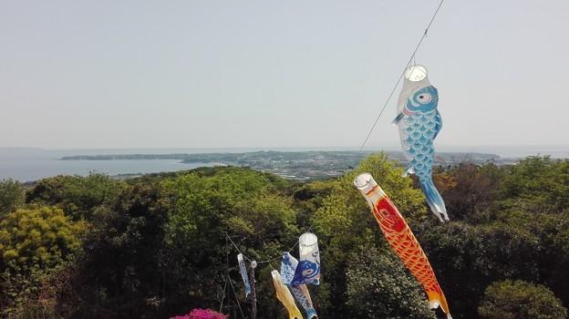 武山から三浦半島を