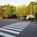 Photos: 獨医祭当日@獨協医科大学