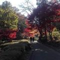 夫婦の影と光そして紅葉