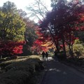 写真: 夫婦の影と光そして紅葉