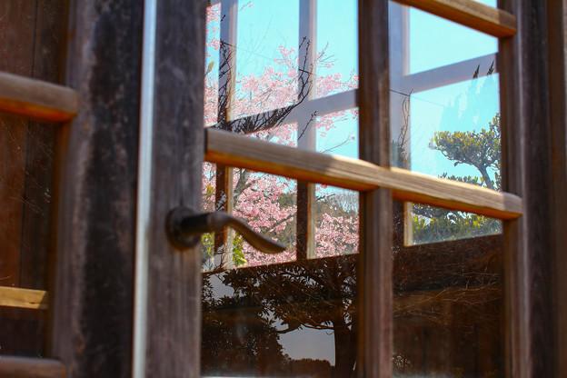 扉の窓の風景