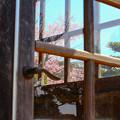 写真: 扉の窓の風景